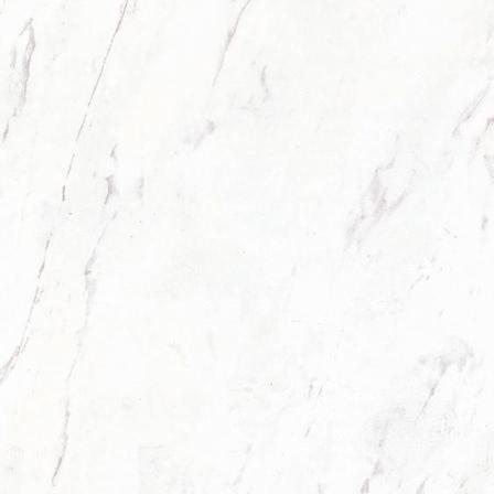 ELJ00280S卡拉拉白